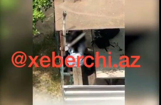 Bakıda daha bir BİABIRÇILIQ- İki məktəbli qız intim əlaqəyə girdi - FOTO