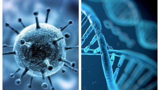 Koronavirusa yoluxmanın qarşısını alan — ƏN EFFEKTİV ÜSUL